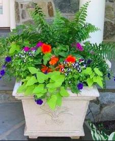 store-blomsterkrukker