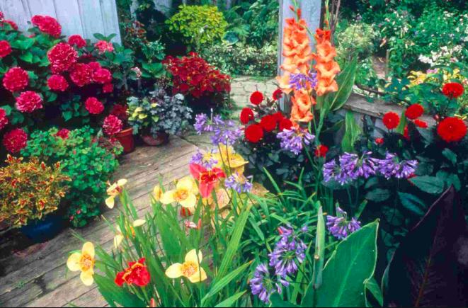 store blomsterkrukker